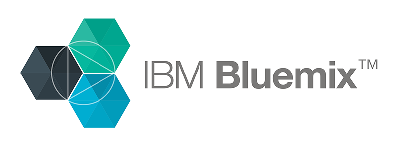 blockchain audit IBM Bluemix logo